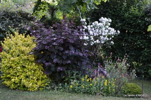 jardin,portes ouvertes,Julie 024.JPG