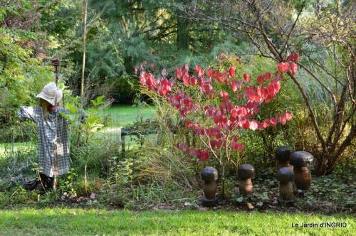 jardin ,chez Fabien,automne 093.JPG