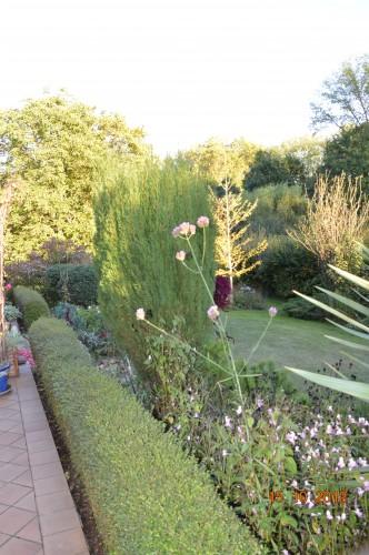 citrouilles,jardin,Combarel 024.JPG