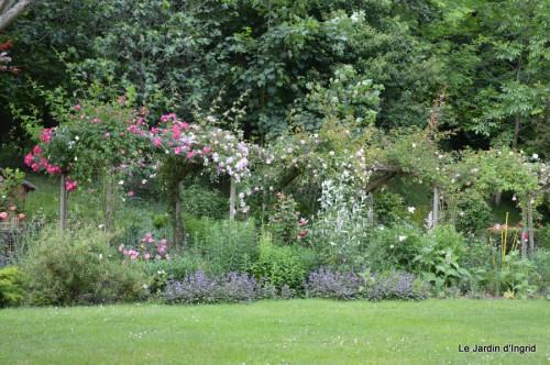 tour du jardin en juin 111.JPG