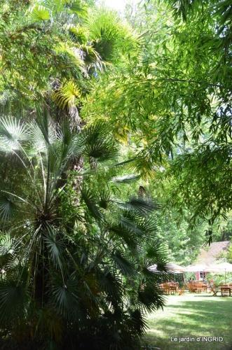 bambous Roque Gageac,jardin,bouquet 123.JPG