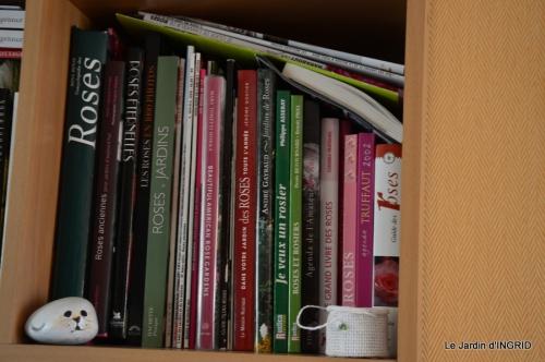 bibliotèque,colline 045.JPG