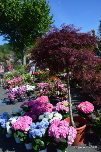 muguet,féte des fleurs Lalinde,jardin 105.JPG