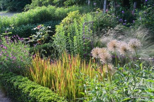 tempête colline,jardin en juin 045.JPG
