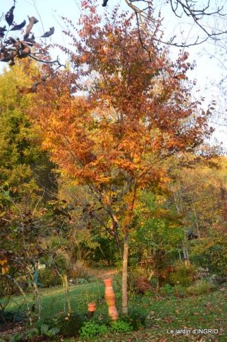 canal,automne,tonte des feuilles 071.jpg
