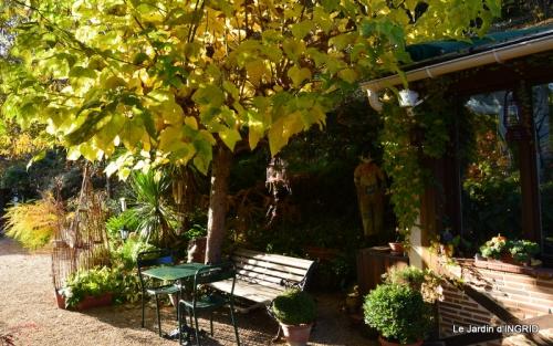 les arbres en automne,cabane 057.JPG