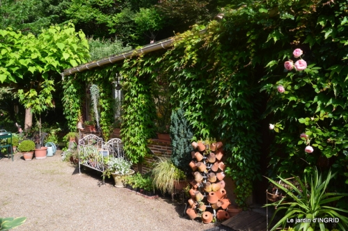 portes ouvertes,taille marguerittes,jardin 056.JPG