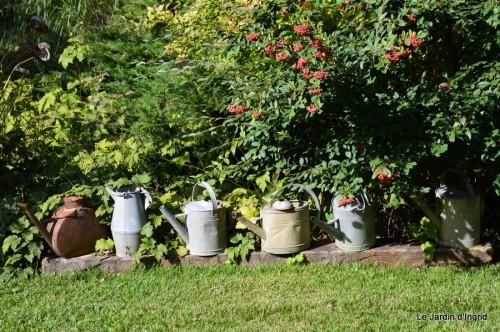 ménage automne,plectanthrus,feuillages 047.JPG