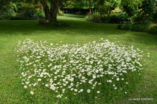 fête de la fraise Vergt,roses jardin 142.JPG