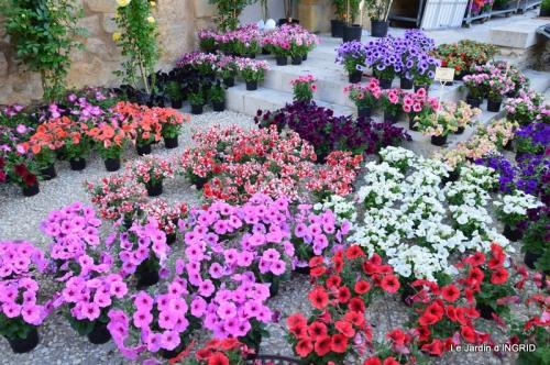 Cadouin,ancolies,roses,pollen,osier,photos Fabien,coquelicots 020.JPG