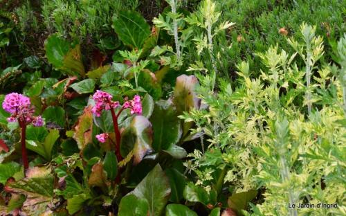canal,iris,marguerite,ancolies,brocante Beaumont,oeufs de Paques 091.JPG