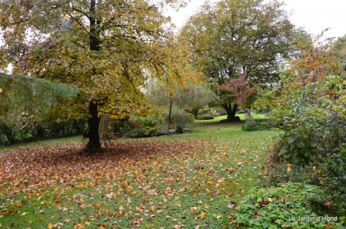 automne,arbres,inondation 007.JPG