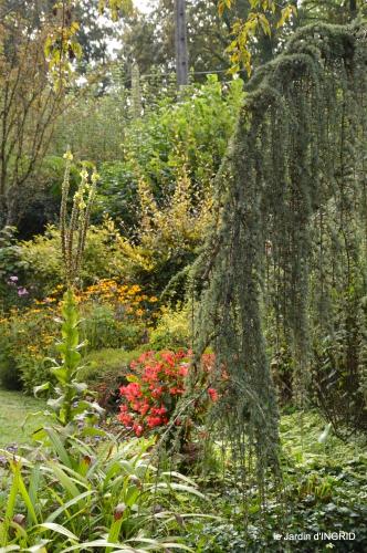 jardin en septembre,les cygnes 146.JPG