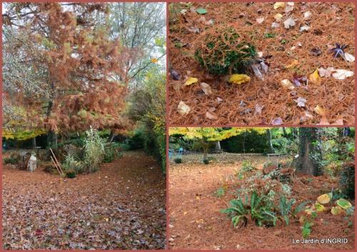 2015-11-05 Romefort,bord de Creuse,vent,feuilles,jardin,canal1.jpg