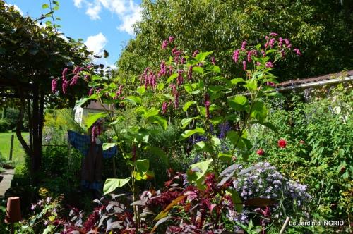 jardin pour l'automne,affiche vide jardin 100.JPG