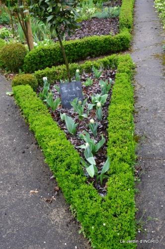 jardin (3 semaine de mars) 067.JPG