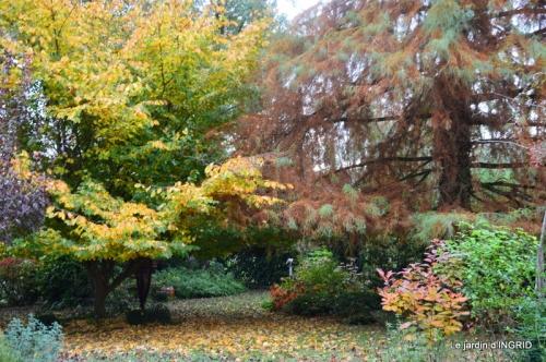 feuillages d'automne et tonte de la pelouse 097.JPG