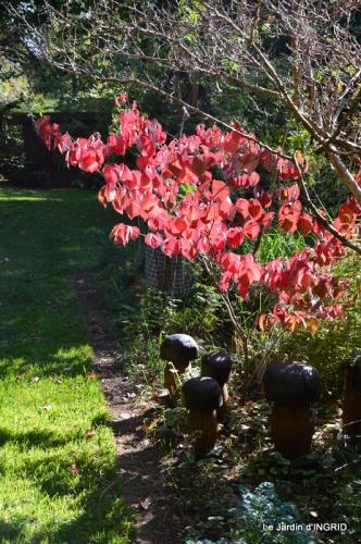 jardin Mme Perichou,grandes fleurs,bouquet,jardin 071.JPG