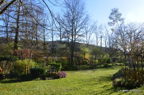 semis,bassin,tour du jardin 066.JPG