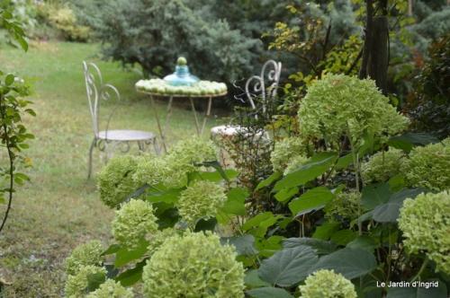 bouquet bleu,kakis,cage,Banes, jardin juillet 061.JPG
