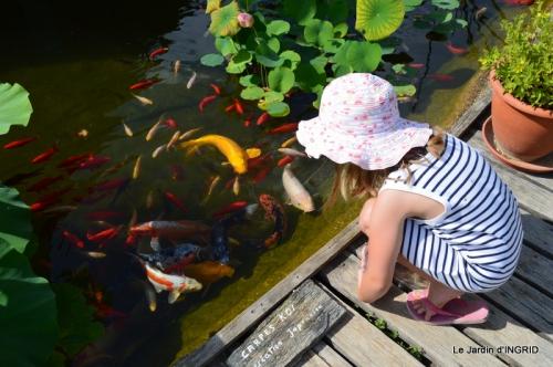 les jardins d'eau de Carsac 162.JPG