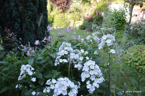 jardin matin,Romane ,nicky 022.JPG