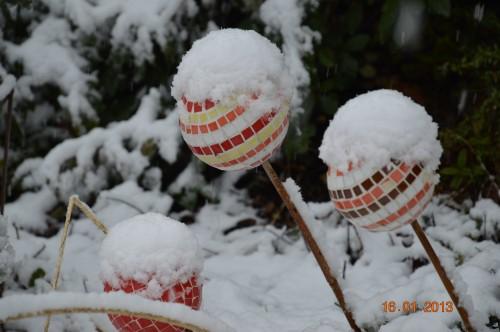 mesanges à longues queues,orchidées,neige2013 126.JPG