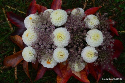 Romefort,bord de Creuse,vent,feuilles,jardin,canal 206.JPG