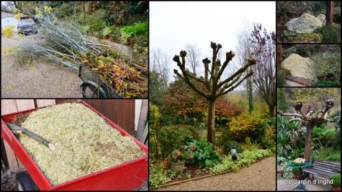 2014-11-21 jardin et travaux d'automne3.jpg