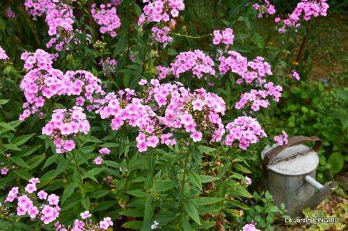dahlias,jardin,puces st Avit Seigneur,Paniers Issigeac,Romane 081.JPG