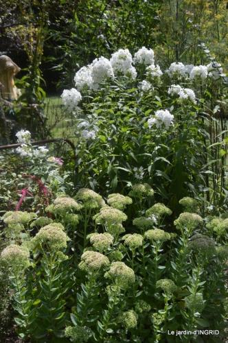 orage,puces,bouquet,Anniv.Ines,Brantome,Jardins d'eau 364.JPG