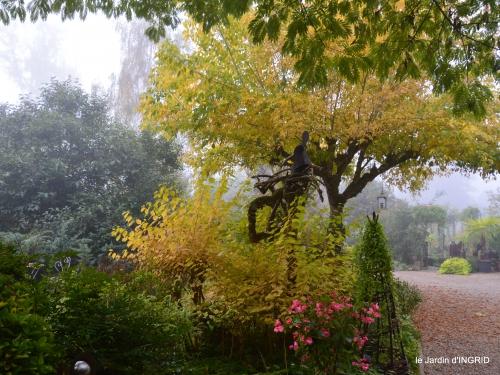 brouillard le matin d'automne 025.JPG