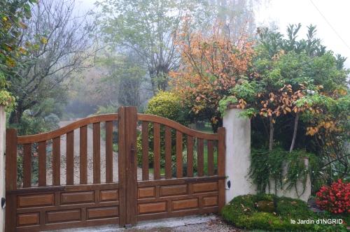 brouillard le matin d'automne 027.JPG