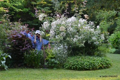 jardin,chez Bernadette,puces,cygnes,pluie 016.JPG