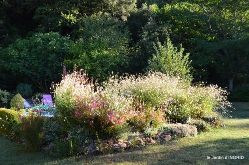 Belves puces,jardin,cygnes,bouquet blanc,arrosage 073.JPG