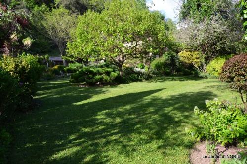 jardin soir et matin 032.JPG