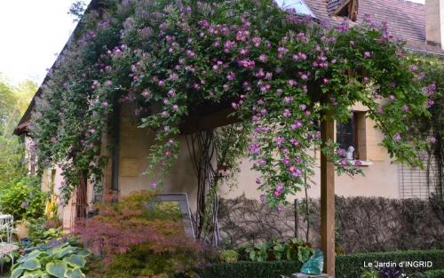 fête de la fraise Vergt,roses jardin 093.JPG
