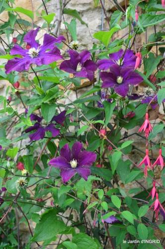 jardin,chez Bernadette,puces,cygnes,pluie 180.JPG