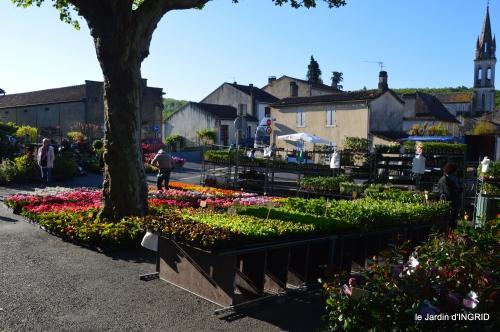 coquelicots,fête des fleurs Lalinde,fouleix,jardinage 051.JPG