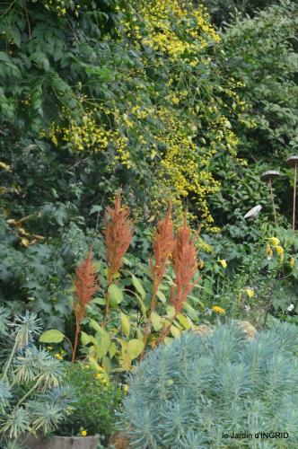 Ines,jardin,lagestromia,brocante Lalinde 030.JPG