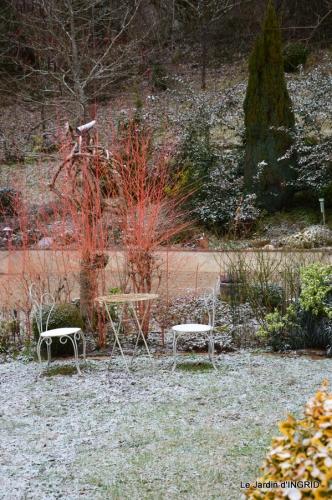 oiseaux première neige 032.JPG