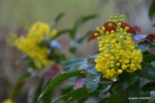 osier,bouquet,cabane,jardin 015.JPG