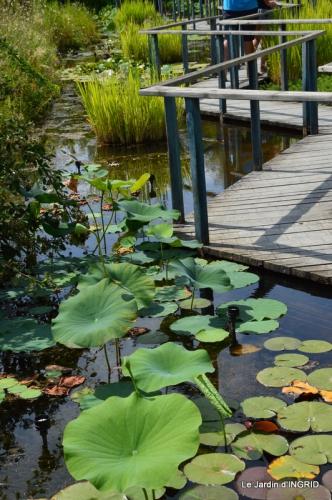 les jardins d'eau de Carsac 043.JPG