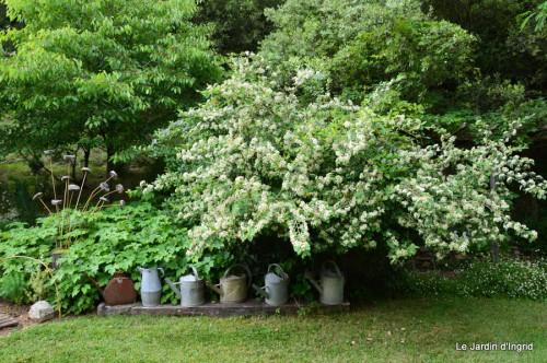 jardin,puces Eymet 015.JPG