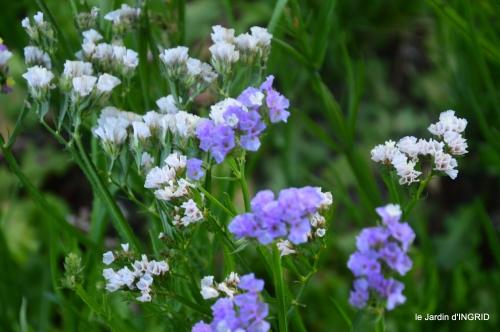 Fleurettes,Dordogne,jardin 177.JPG