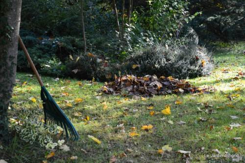 troncs,automne,vieilles photos 034.JPG
