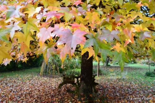 jardin serre bucher automne 018.JPG