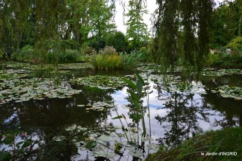 bouquet,jardin de Monet,les vaches,Pourville sur mer 137.jpg