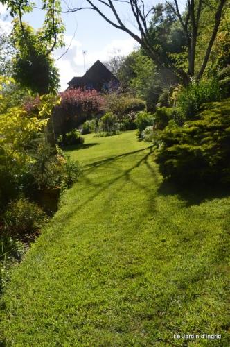 jardin avril et mai, 121.JPG