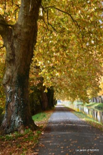 canal automne ,jardin,Ines 087.JPG